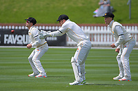 From left, Peter Younghusband, Tom Blundell and Finn Allen during day two of the Plunket Shield match between the Wellington Firebirds and Canterbury at Basin Reserve in Wellington, New Zealand on Tuesday, 20 October 2020. Photo: Dave Lintott / lintottphoto.co.nz