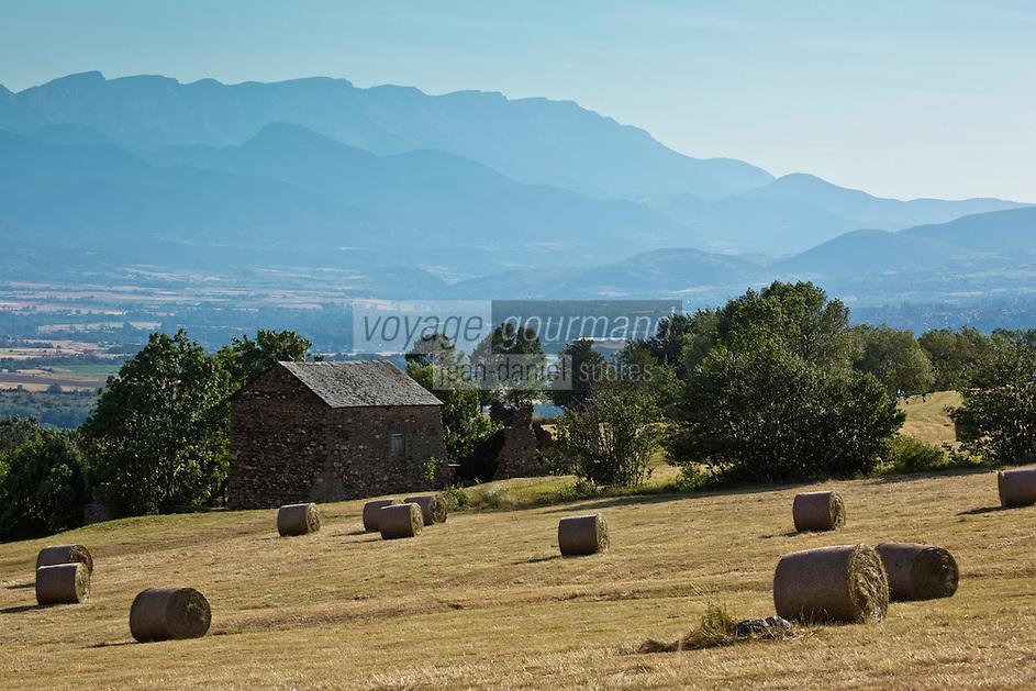 Europe/France/Languedoc-Roussillon/66/Pyrénées-Orientales/Cerdagne/Env de Saillagouse:  pâturages du plateau cerdan au Col Rigat aprés la fenaison