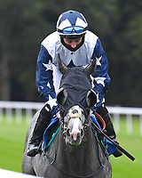 Nibras Shadow ridden by Rossa Ryan goes down to the start  of The Venture Security Handicap Stakes during Horse Racing at Salisbury Racecourse on 11th September 2020