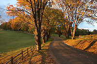 "Beutiful scenic road leading up to Ash Lawn-Highland, a historic house museum, 535-acre working farm, and performing arts site in Albemarle County, Virginia. President James Monroe and his wife, Elizabeth Kortright Monroe of New York, owned Ash Lawn-Highland from 1793 to 1826 and made it their official residence from 1799 to 1823. After the Monroes' death, the name of their farm was changed from ""Highland"" to ""Ash Lawn""; today both names are used...Ash Lawn-Highland was opened for public visitation in 1931 by philanthropist Jay Winston and Helen Lambert Johns. Upon his death in late 1974, Johns bequeathed Ash Lawn-Highland to the College of William and Mary, alma mater of James Monroe. Accepting the Johns bequest ""to operate this property as a historic shrine for the education of the general public,"" the College initiated new programs in restoration and interpretation at Ash Lawn-Highland."