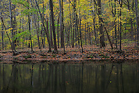 Clearfork Mohican River<br /> Hemlock Gorge Trail<br /> Mohican State Park<br /> Ashland County, Ohio