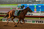"""DEL MAR, CA  AUGUST 18:  #5 Accelerate, ridden by Joel Rosario, in the stretch of the $1 Million TVG Pacific Classic (Grade l) """"Win and You're in Classic Division"""" on August 18, 2018 at Del Mar Thoroughbred Club in Del Mar, CA. (Photo by Casey Phillips/Eclipse Sportswire/Getty Images"""