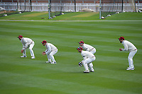 The Canterbury slips react to a delivery during day three of the Plunket Shield match between the Wellington Firebirds and Canterbury at Basin Reserve in Wellington, New Zealand on Wednesday, 21 October 2020. Photo: Dave Lintott / lintottphoto.co.nz