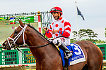 JUNE 16, 2019 :  King for a Day (#3),with Joe Bravo, scores an upset over Maximum Security by winning the Pegasus Stakes, at Monmouth Park, in Oceanport, NJ, June 16, 2019.  Sue Kawczynski_ESW_CSM
