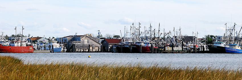 The Fleet is In - Fishing boats dockside at Long Island Beach, mid-winter.