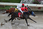 September 3, 2012. Undercard races and scene at Parx Racing on Turf Monster/Smarty Jones Stakes Day. Under the wire in race 7, a claiming race for three years olds and upward who have never won three races. (Joan Fairman Kanes/Eclipse Sportswire)