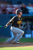 Bethune-Cookman Wildcats catcher Michael Cruz (15) at bat during a game against the Wisconsin-Milwaukee Panthers on February 26, 2016 at Chain of Lakes Stadium in Winter Haven, Florida.  Wisconsin-Milwaukee defeated Bethune-Cookman 11-0.  (Mike Janes/Four Seam Images)