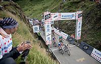 World Champion Alejandro Valverde (ESP/Movistar) leading the peloton over the Horquette d'Ancizan<br /> <br /> Stage 12: Toulouse to Bagnères-de-Bigorre(209km)<br /> 106th Tour de France 2019 (2.UWT)<br /> <br /> ©kramon