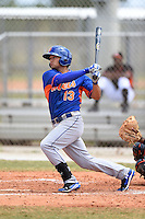 New York Mets second baseman Lee Mazzilli (13) hits a home run during a minor league spring training game against the Miami Marlins on March 28, 2014 at Roger Dean Stadium in Jupiter, Florida.  (Mike Janes/Four Seam Images)