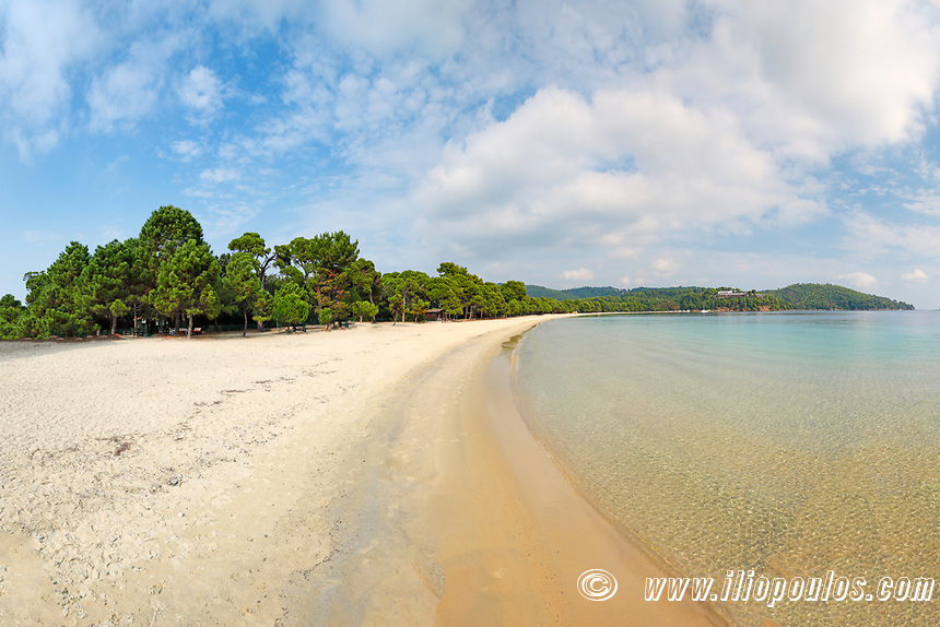 The beach Koukounaries of Skiathos island, Greece