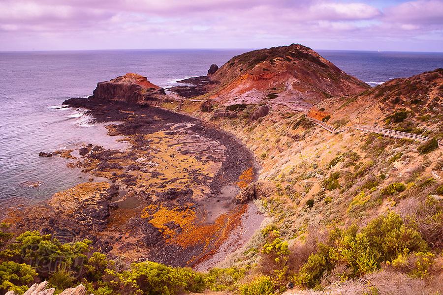 Image Ref: CA1270<br /> Location: Cape Schank<br /> Date of Shot: 04.04.21