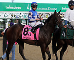 September 14, 2019 : Dennis'  Moment (#8, Irad Ortiz Jr.) in the post parade of the Iroquois Stakes at Churchill Downs, Louisville, Kentucky. Trainer Dale Romans, owner Albaugh Family Stables LLC (Dennis Albaugh). By Tiznow x Transplendid (Elusive Quality)  Mary M. Meek/ESW/CSM
