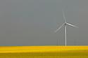 13/05/06 - LE MAGE - EURE ET LOIRE - FRANCE - Eoliennes et champs de Colza en fleur dans la BEAUCE. Pour illsustrer les biocarburants et les energies renouvelables - Photo © Jerome CHABANNE