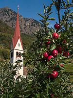St. Ulrich in Oberplars, Algund bei Meran, Region Südtirol-Bozen, Italien, Europa<br /> St. Ulrich in Oberplars, Lagundo near Merano, Region South Tyrol-Bolzano, Italy, Europe