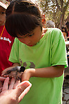 Banding Birds at Guadalupe River State Park