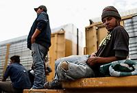 """Tibe Melendez de 20 años originario de Honduras es uno de los  migrantes que llegaron a la estación de tren en Hermosillo Sonora.<br /> Forman parte de un contingente de 600 personas que conforman la caravana del Migrante su mayoría de origen centroamericano, arribaron a bordo del tren conocido como """"La Bestia"""", provienen de la frontera Sur del País y con rumbo a la ciudad de Mexicali donde continuaran el viaje hasta Tijuana.<br /> La caravana tiene como objetivo solicitar <br /> asilo a Estados Unidos y algunos integrantes piensan solicitar una visa humanitaria en Mexico para laborar en los campos de Sonora y Baja California.<br /> (Photo: AP/Luis Gutierrez)"""