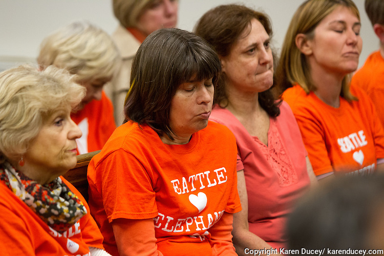 Animal advocates from the Elephant Justice Project listen to Judge Palmer Robinson's decision that management and ownership of the Woodland Park Zoo elephants, and the right to send them to the Oklahoma City Zoo, belongs to the Woodland Park Zoo Society, in King County Superior Court on April 3, 2015 (photo by Karen Ducey Photography)