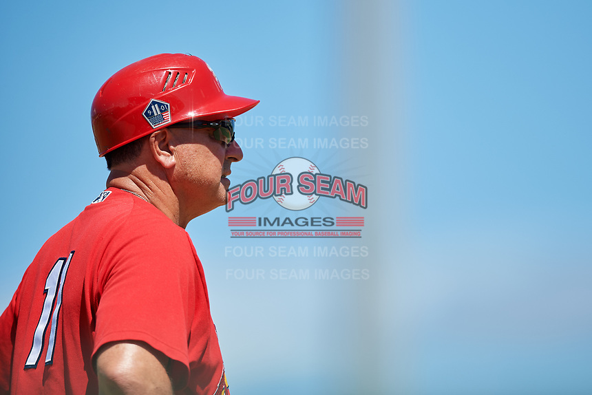 Palm Beach Cardinals manager Dann Bilardello (11) during a game against the Jupiter Hammerheads on August 5, 2018 at Roger Dean Chevrolet Stadium in Jupiter, Florida.  Jupiter defeated Palm Beach 3-0.  (Mike Janes/Four Seam Images)