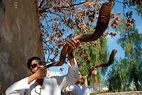 Gerusalemme / Israele.Giovani ebrei suonano il tradizionale corno shofar nel quartiere Me'a Sherim..Lo shofar è menzionato spesso nella Bibbia, dal libro dell'Esodo a quello di Zaccaria e lungo il Talmud e la letteratura rabbinica successiva. Fu la voce dello shofar, eccezionalmente forte, suonato dalle nubi che ricoprivano la cima del monte Sinai che fece tremare il popolo di Israele (Esodo 19,20).Lo shofar è usato per annunciare la luna nuova e le feste solenni (Numeri 10;10, Ps. 81;4) così come per proclamare l'anno del Giubileo (Levitico 25;8-13). Viene suonato anche il primo giorno del settimo mese (Tishri) per proclamare Rosh haShana (Levitico 23;24 e Numeri 29;1)..Foto Livio Senigalliesi