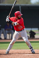 Los Angeles Angels catcher Julian Leon (36) during a Minor League Spring Training game against the Colorado Rockies at Tempe Diablo Stadium Complex on March 18, 2018 in Tempe, Arizona. (Zachary Lucy/Four Seam Images)