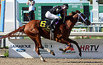 March 28, 2015  I'm a Chatterbox (Florent Geroux) wins the G2 Fair Grounds Oaks.  Owner Fletcher and Carolyn Gray, trainer Larry Jones ©Mary M. Meek/ESW/CSM