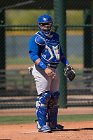 Chicago Cubs catcher Alex Guerra (6) during an Extended Spring Training game against the Los Angeles Angels at Sloan Park on April 14, 2018 in Mesa, Arizona. (Zachary Lucy/Four Seam Images)