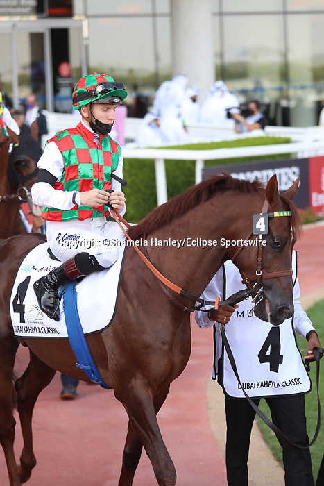 March 27, 2021: DERYAN #5 in the post parade for the Kahayla Classic for Didier Guillemin on Dubai World Cup Day, Meydan Racecourse, Dubai, UAE. Shamela Hanley/Eclipse Sportswire/CSM