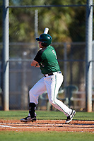 Dartmouth Big Green first baseman Michael Calamari (3) at bat during a game against the Northeastern Huskies on March 3, 2018 at North Charlotte Regional Park in Port Charlotte, Florida.  Northeastern defeated Dartmouth 10-8.  (Mike Janes/Four Seam Images)