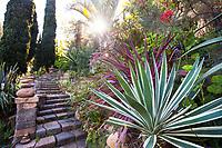Stone stairway with Agave angustifolia variegata (Caribbean Agave) and Cordyline australis 'Pink Stripe', Jim Bishop and Scott Borden garden