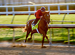 August 30, 2020: Attachment Rate breezes as horses prepare for the 2020 Kentucky Derby and Kentucky Oaks at Churchill Downs in Louisville, Kentucky. The race is being run without fans due to the coronavirus pandemic that has gripped the world and nation for much of the year. Scott Serio/Eclipse Sportswire/CSM