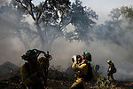 Firefighters from the BRICA, the Andalusian Service firefighting (INFOCA), drink water during a forest fire in Los Barrios, near Cadiz on July 25, 2015. Since July 19 wildfires have ravaged nearly 39,000 hectares of land in Spain, according to the provisional figures from the agriculture ministry. © Pedro ARMESTRE