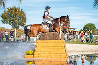 GBR-Tom McEwen rides Toledo De Kerser during the Cross Country for the CCI5*-L. Interim-1st. Les 5 Etoiles de Pau. Pyrenees Atlantiques. France. Saturday 26 October. Copyright Photo: Libby Law Photography
