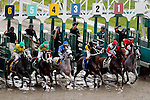 OCEANPORT, NJ - JULY 31: The field exits the starting gate in the Monmouth Cup Stakes before the 49th betfair.com Haskell Invitational Stakes at Monmouth Park on July 31, 2016 in Oceanport, New Jersey. (Photo by Jon Durr/Eclipse Sportswire/Getty Images)
