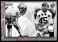 Basil Bark-JOGO Alumni cards-photo: Scott Grant