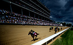 LOUISVILLE, KY - MAY 06: Wild Shot #8, ridden by Corey Lanerie, carries the lead down the stretch to win the the Pat Day Mile Stakes on Kentucky Derby Day at Churchill Downs on May 6, 2017 in Louisville, Kentucky. (Photo by Scott Serio/Eclipse Sportswire/Getty Images)