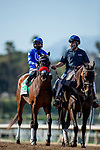 March 06, 2021: The Great One and Able Cedillo aboard at the San Felipe Stakes at Santa Anita Park in Arcadia, California on March 06, 2021. Evers/Eclipse Sportswire/CSM