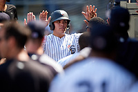 Staten Island Yankees third baseman Andres Chaparro (26) high fives with his teammates in the dugout after scoring a run during a game against the Lowell Spinners on August 22, 2018 at Richmond County Bank Ballpark in Staten Island, New York.  Staten Island defeated Lowell 10-4.  (Mike Janes/Four Seam Images)