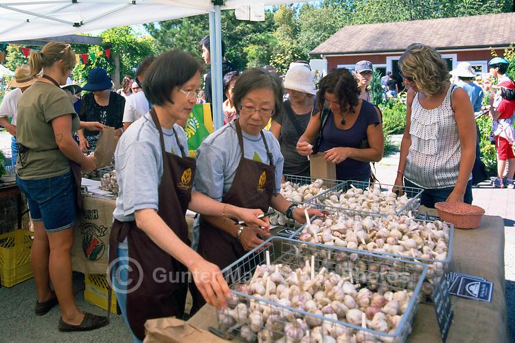5th Annual Garlic Festival, August 2013 (hosted by The Sharing Farm) at Terra Nova Rural Park, Richmond, BC, British Columbia, Canada - Organic Garlic for sale, grown by The Sharing Farm