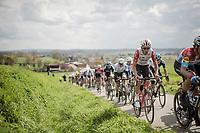 Tiesj Benoot (BEL/Lotto-Soudal)<br /> <br /> 74th Dwars door Vlaanderen 2019 (1.UWT)<br /> One day race from Roeselare to Waregem (BEL/183km)<br /> <br /> ©kramon