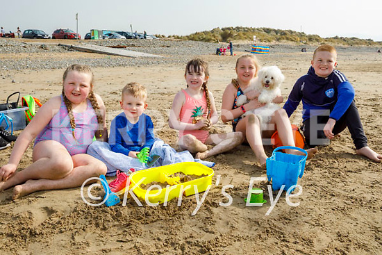 Enjoying a stroll on Banna beach on Thursday, l to r: Mia Leen, Brody Clifford, Caoimhe Fitzgerald, Taylor Kate Leen with Tilly the dog and Jayden Clifford.