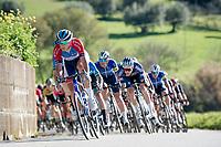 Niki Terpstra (NED/Total - Direct Energie)<br /> <br /> Stage 6 from Castelraimondo to Lido di Fermo (169km)<br /> <br /> 56th Tirreno-Adriatico 2021 (2.UWT) <br /> <br /> ©kramon