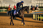April 27, 2021:  Maracuja gallops in preparation for the Kentucky Oaks at Churchill Downs in Louisville, Kentucky on April 27, 2021. EversEclipse Sportswire/CSM