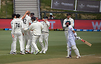 NZ's Kyle Jamieson celebrates his 10th wicket during day four of the second International Test Cricket match between the New Zealand Black Caps and Pakistan at Hagley Oval in Christchurch, New Zealand on Wednesday, 6 January 2021. Photo: Dave Lintott / lintottphoto.co.nz