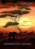 Kris, ETHNIC, paintings,+elephant, savanna++++,PLKKE290,#ethnic# Africa