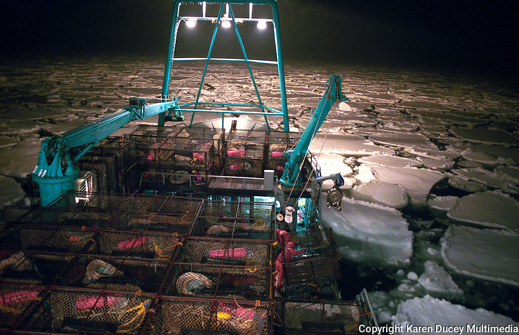 "The fishing vessel ""Kiska Sea"" fishes for opilio crab in the arctic ice pack of the Bering Sea in January and February of 1995.  The Bering Sea is known for having the worst storms in the world.    Nights are long and cold in the arctic in the winter.  Crab fishing in the Bering Sea is considered to be one of the most dangerous jobs in the world.  This fishery is managed by the Alaska Department of Fish and Game and is a sustainable fishery.  The Discovery Channel produced a TV series called ""The Deadliest Catch"" which popularized this fishery. Today this fishery, largely based out of Dutch Harbor, AK has been consolidated resulting in a lot less boats fishing."