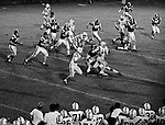 Bethel Park PA:  Offensive play with Mike Stewart 11 and Mike Fassinger 83 running the option.  Great crackback block by Bruce Evanovich 80. Others in the photo; Don Troup 51, Jim Dingeldine 73.  After Scott Streiner was injuried on the first play, the team rallied and came up just short of winning the game when they missed a two-point conversion late in the 4th quarter (7-6).  Defensive unit was one of the best in Bethel Park history only allowing a little over 7 points a game.