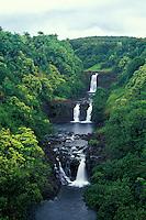 Umauma Falls,  north of Hilo, World botanical gardens, Big Island