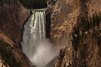 Lowerfalls on the Yellowstone River