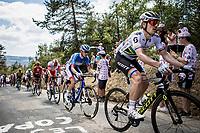 Daryl Impey (ZAF/Mitchelton-Scott) in the breakaway group up the Mur d'Aurec-sur-Loire (3.2km at 10.8%)<br /> <br /> Stage 9: Saint-Étienne to Brioude (170km)<br /> 106th Tour de France 2019 (2.UWT)<br /> <br /> ©kramon
