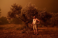 Pictured: A lone home owner armed with an olive branch awaits to protect his property from the flames.<br /> Re: A forest fire has been raging in the area of Kalamos, 20 miles east of Athens in Greece. There have been power cuts, country houses burned and children camps evacuated from the area.